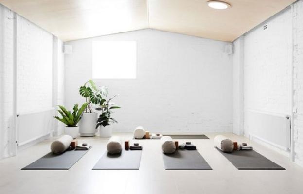 Un tocco green per arricchire la nostra stanza yoga