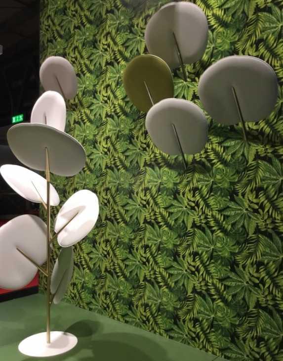 Botanica, di Caimi