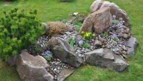 Utilizzo creativo dei sassi in giardino