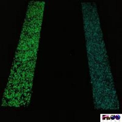 Vernice spray fotoluminescente di FluoStyle