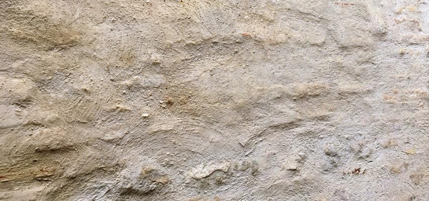 Intonaco a calce naturale, di Banca della calce