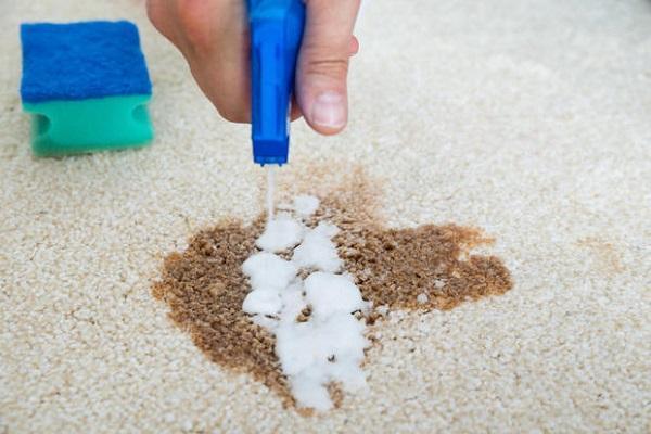Pulizia con smacchiatore su tappeto