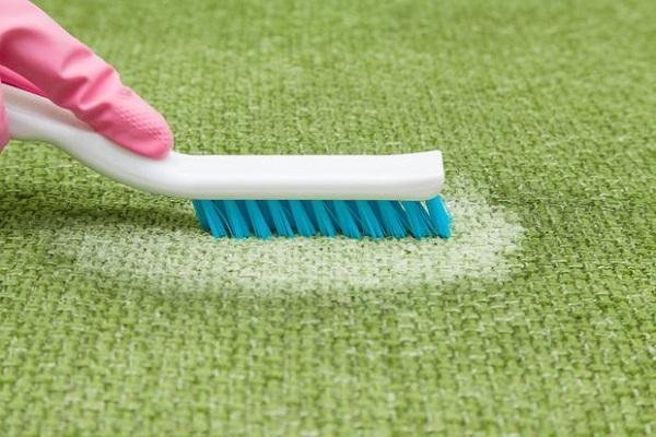 Spazzola su tappeto