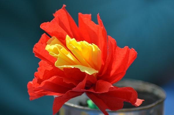 Fiore di carta crespa