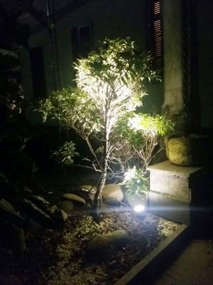 Faretto a led con picchetto per illuminazione cespugli, by Novaprecisio