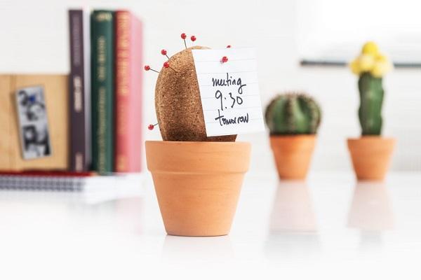 Accessori per scrivania Cork Cactus da Suck Uk