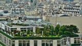 Agevolazioni per tetti verdi
