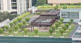 Tetto verde allestito come un vero giardino pensile