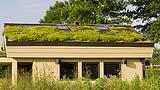 Abitazione unifamiliare con tetto verde