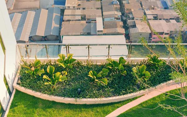 Con il Bonus Verde è vantaggioso costruire nuovi tetti verdi