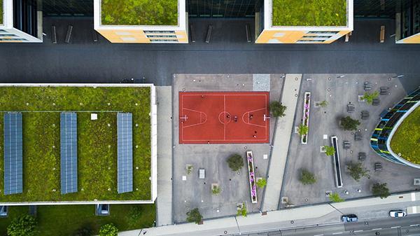 Il tetto verde ha un basso impatto visivo