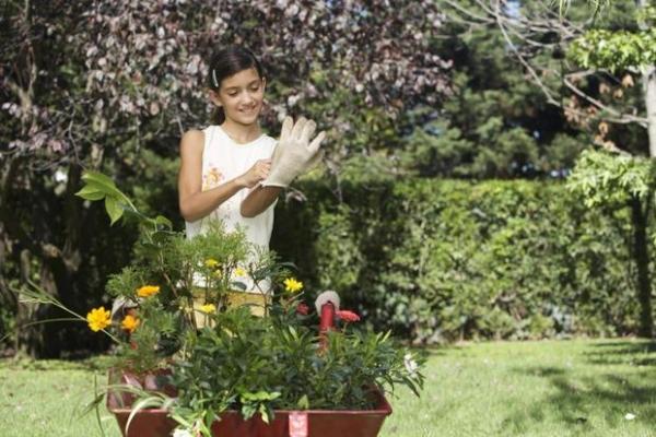 Curare il giardino in modo sicuro