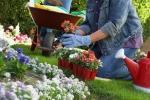 Lavorare in sicurezza in giardino