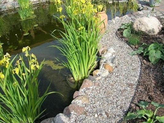 Sistemazione sassi da giardino con la bordura
