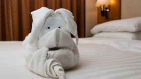 Asciugamani creativi