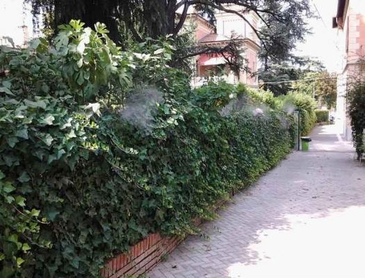 Disinfestazione zanzare giardino, by iZanz