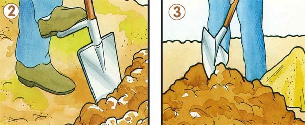 Vangare il terreno per la semina del prato