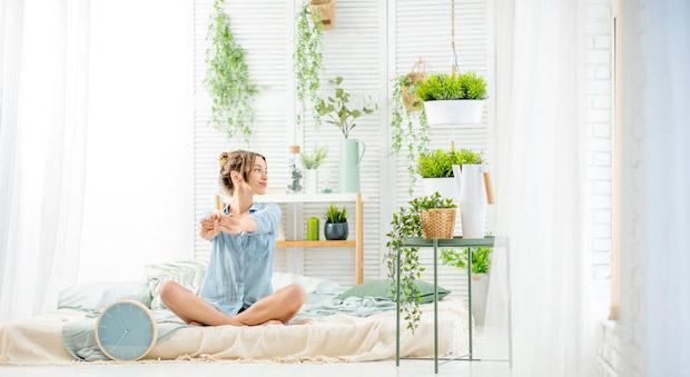 Piante da appartamento quali scegliere - Piante da tenere in camera da letto ...