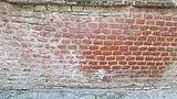 Efflorescenze saline nella zona basamentale di una muratura