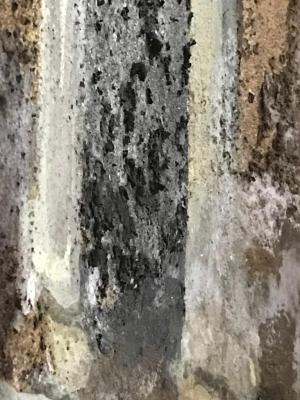 Efflorescenze saline su un dipinto a secco, by restauratrice Silvia Conti