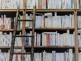 Libreria in legno a tutta parete, su misura.