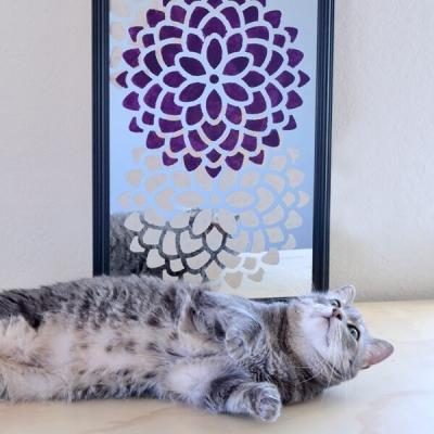 Decorazioni stencil per abbellire uno specchio anonimo, da dreamalittlebigger.com