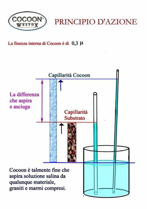 Principio attivo della Pasta Cocoon