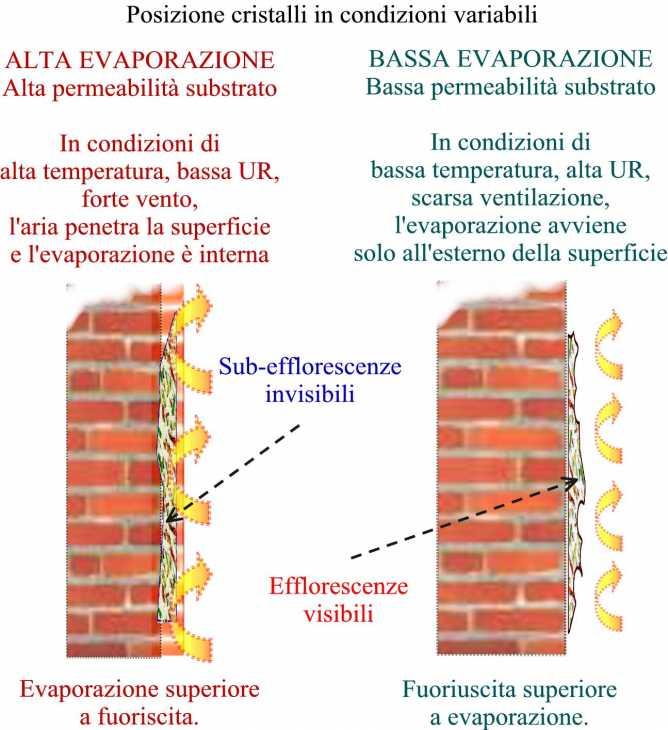 Condizioni di formazione di efflorescenze visibili o di sub-efflorescenze invisibili
