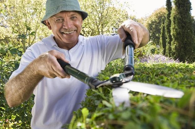 Proprietario pota la siepe del giardino