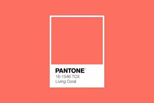 Pantone Palette 2019
