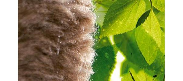 Lana minerale per l'isolamento termico Ecose® Technology di Knauf