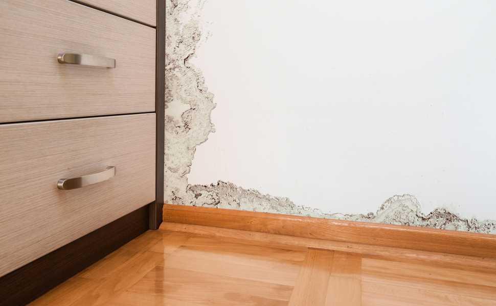 Risarcimento danni per immobile con vizi