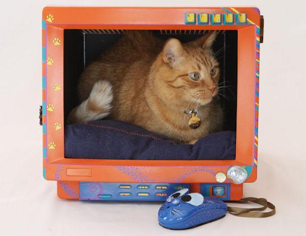 Riciclo creativo computer: cuccia per il gatto con mouse, da instructables.com