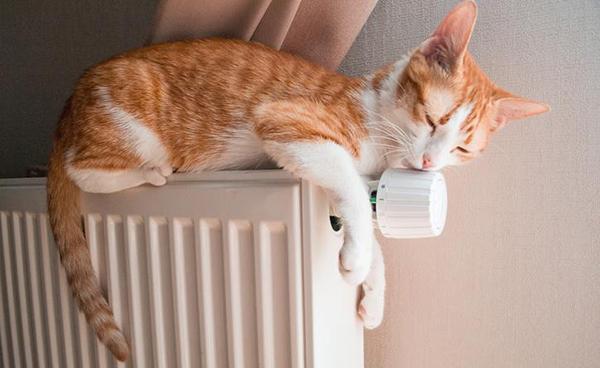 Le valvole termostatiche consentono di regolare efficacemente la temperatura nelle stanze