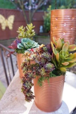 Vasetti per coltivare le piante con i barattoli di latta, da smallhomesoul.com
