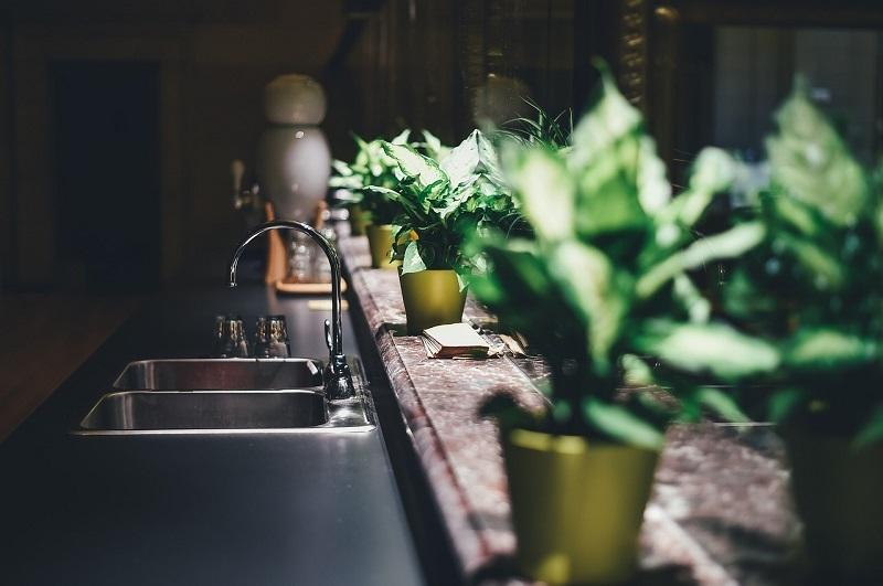 Piante su mensole e piani di lavoro