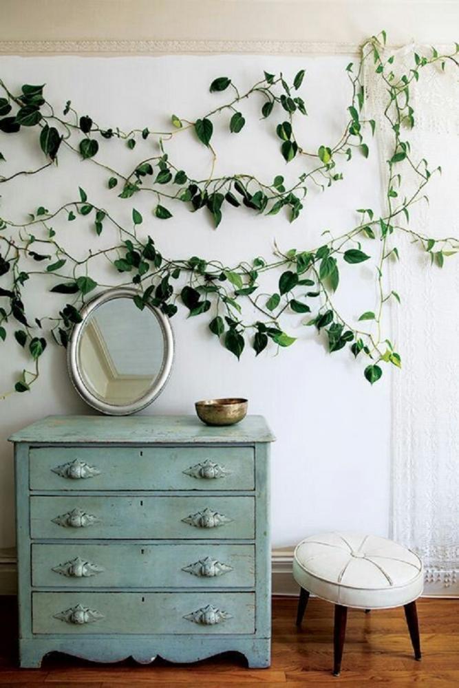 Il pothos è molto decorativo, da roselia-garden.com