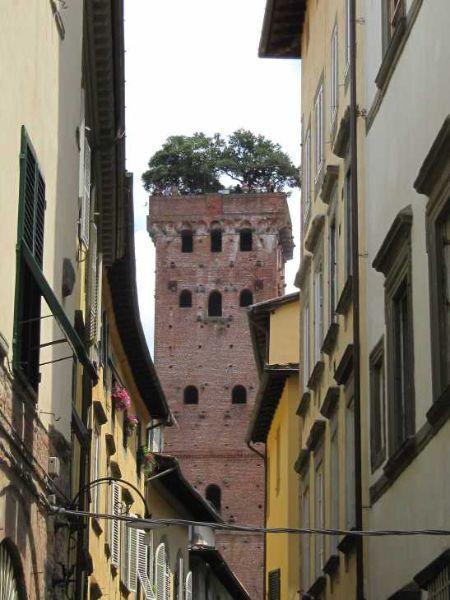 La torre Guinigi a Lucca con i giardini pensili