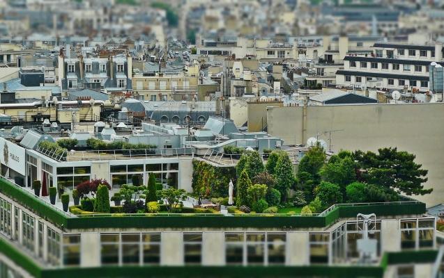 Il verde pensile contribuisce al miglioramento dell'aria nelle città