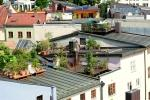 L'impiego del verde sui tetti è un espediente che migliora il microclima interno
