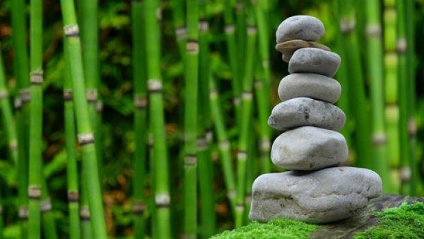 Bellezza ed ecosostenibilità del bambù nell'edilizia e nell'interior design