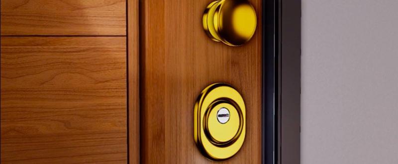 Particolare serratura defender porta blindata