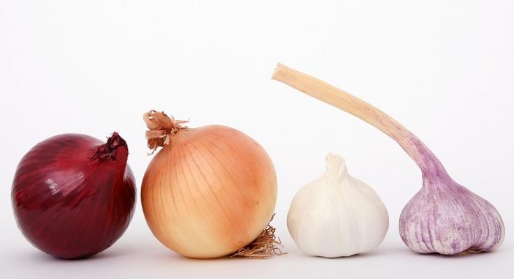 Bulbi aromatici in cucina