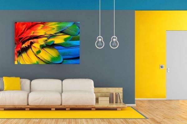 Pareti colorate con pittura ColoreVivo San Marco