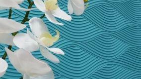 Come dipingere le pareti in modo creativo: 5 idee da copiare