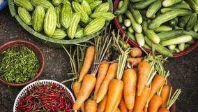 Consigli e suggerimenti su come preparare l'orto in primavera