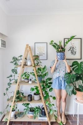 Le piante in case di stile massimalista, da decomg.com