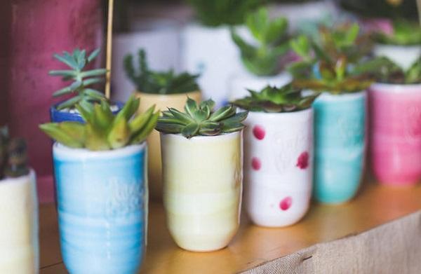 Arredamento stile rustrial l'uso delle piante