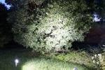 Luci da giardino a spot: Clock by Goccia Illuminazione