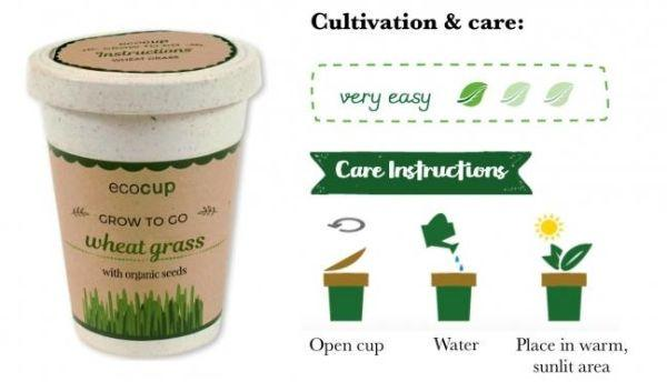 Tazza ecologica in bamboo con semi su Green eco gadget